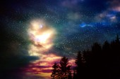 Fotografie Barevné noční obloha s mnoha hvězdami nad stromy silueta.