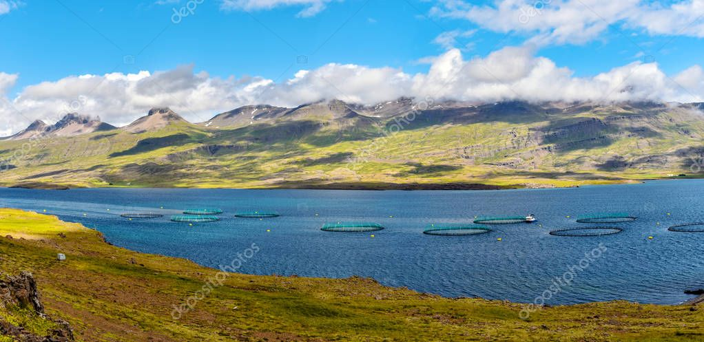 Fish farm close to Djupivogur town in Eastern Iceland as a part
