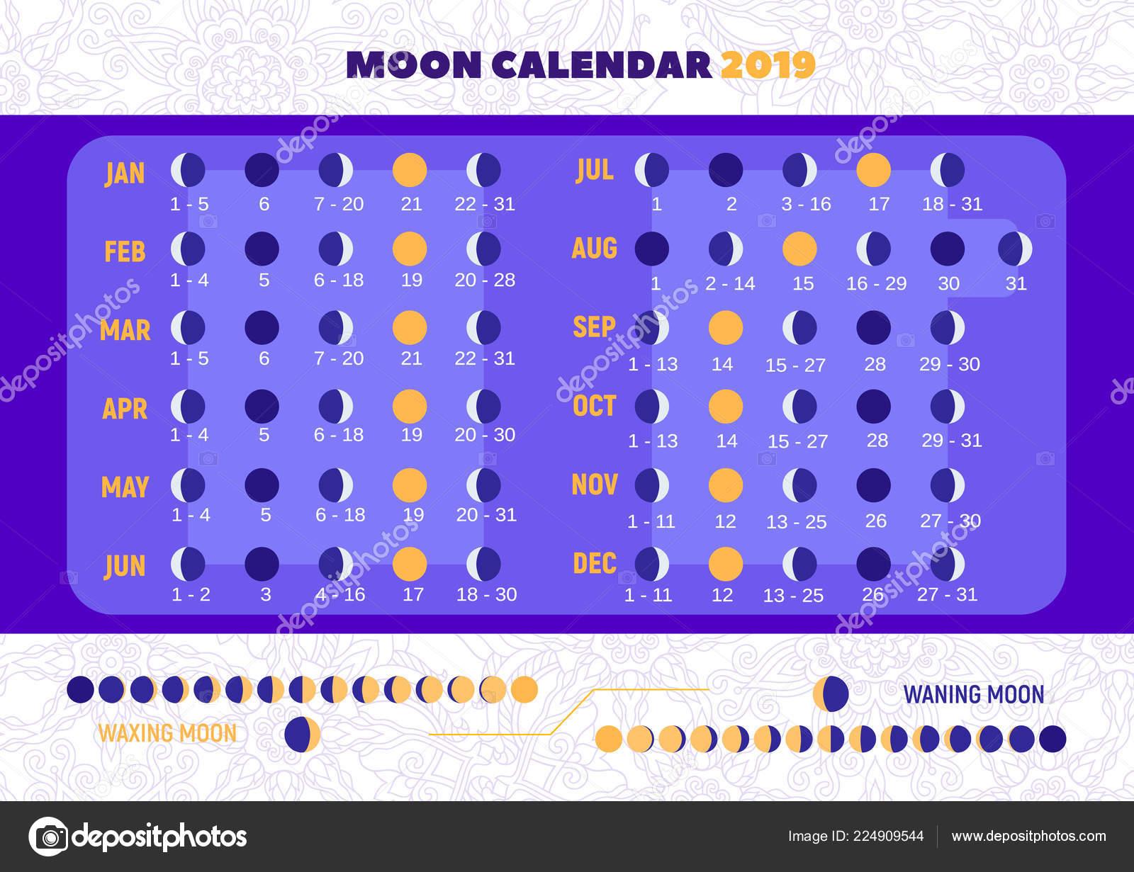 Simboli Luna Calendario.Calendario Della Luna 2019 Illustrazione Vettore Stile Piano