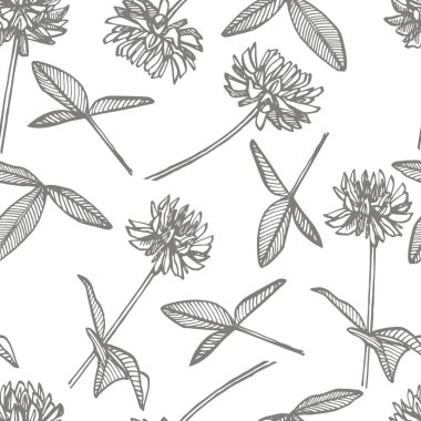 Clover plants. Botanical illustration. Good for cosmetics, medicine, treating, aromatherapy, nursing, package design, field bouquet. Seamless patterns.