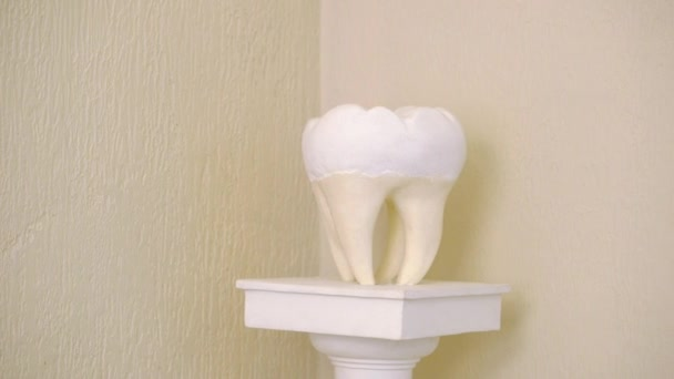 Sculpture of tooth