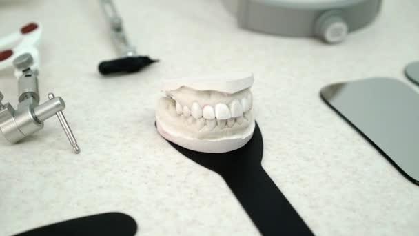 Čelist model v zubní ordinaci