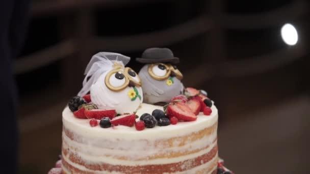 Svatební oslavu dort v rustikálním stylu s sovy postavy na vrcholu