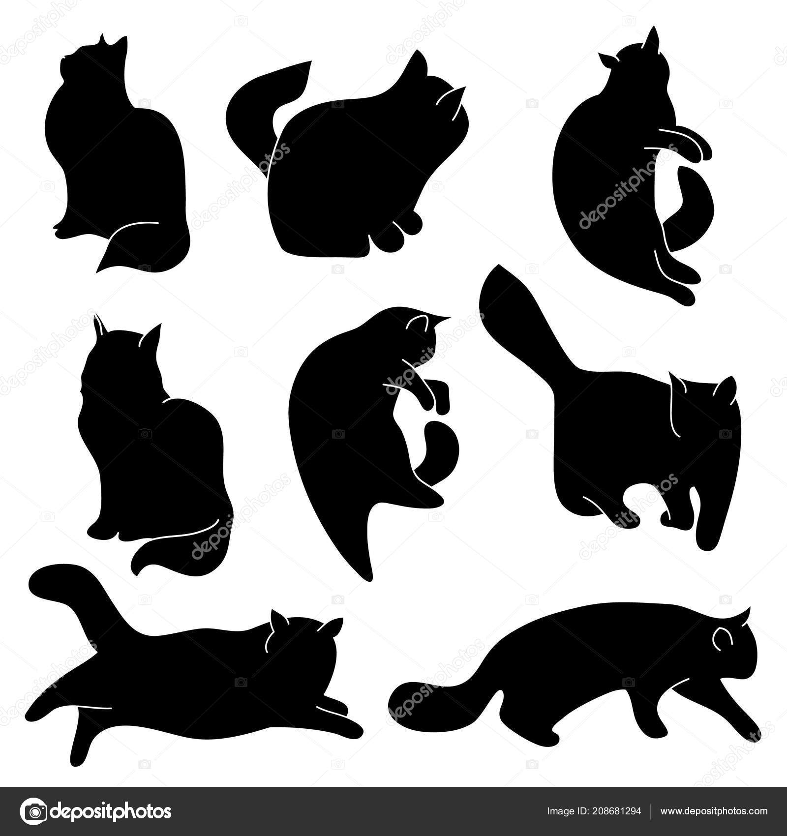 Vector Conjunto Siluetas Gato Diferentes Posturas Sentado Acostado