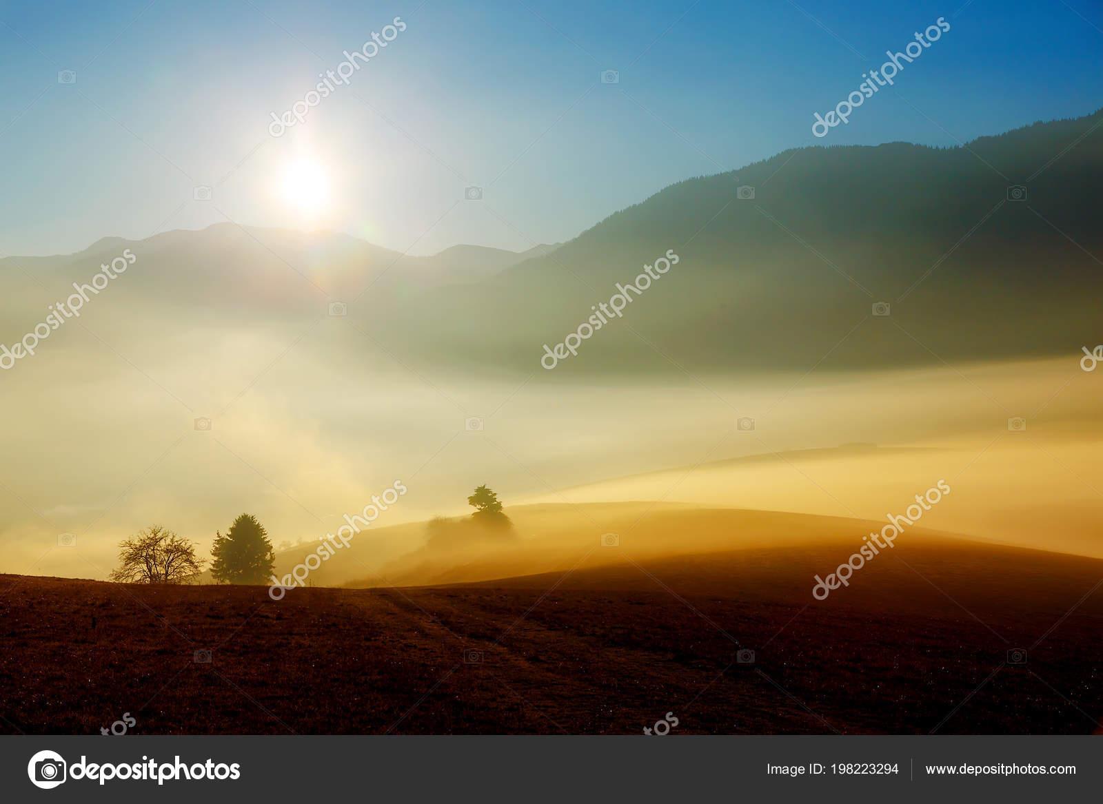 Einen Schönen Guten Morgen Landschaft Mit Sonne Und Nebel