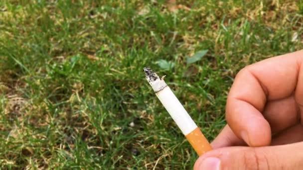 4k Video Rauch oder Rauchen Nahaufnahme von Mann oder männlicher Hand, die eine Filterzigarette mit Asche draußen vor grünem Grashintergrund hält