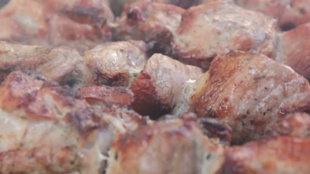 Detail marinovat špíz na grilu. Kouř nad hovězí pečeně na gril Bbq. Chutný šíš kebab na jehle