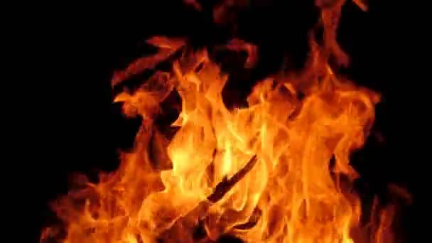Closeup oranžový oheň plamen na černém pozadí. Horké plameny z dřevěných hranolů v krbu. Palivové dříví hoření v ohništi.
