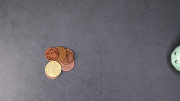 Ruka s prasátko a bankovními mincemi