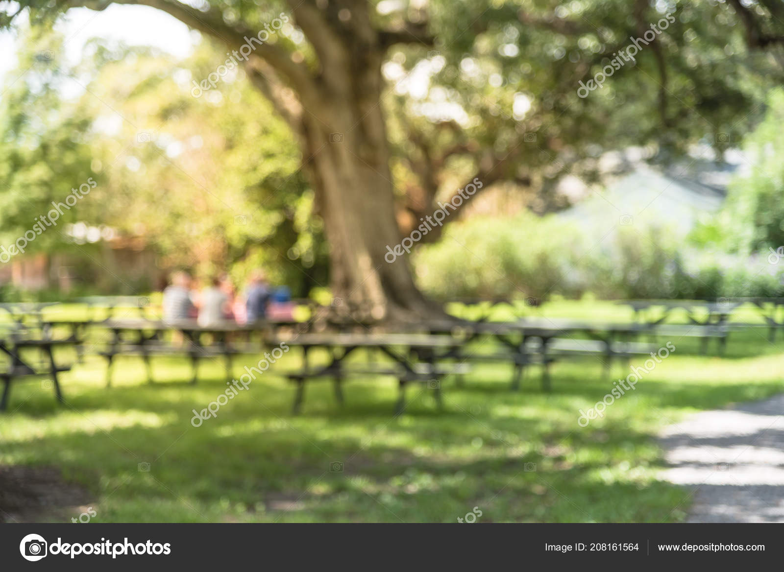 Blurred Image Picnic Tables Green Grass People Having Lunch