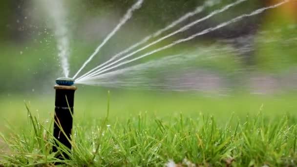 Automatický hasící systém zavlažování trávníku na pozadí zelené trávy, detail