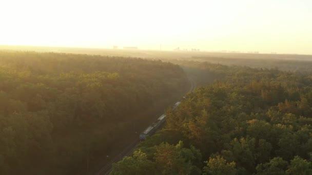 kommt der elektrische Zug in die Stadt, die am Horizont sichtbar ist, durch den Wald im Morgennebel.