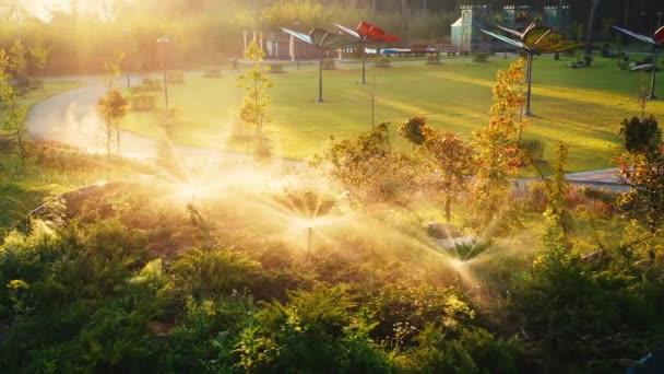 Automatikus öntözés a parkban hajnalban
