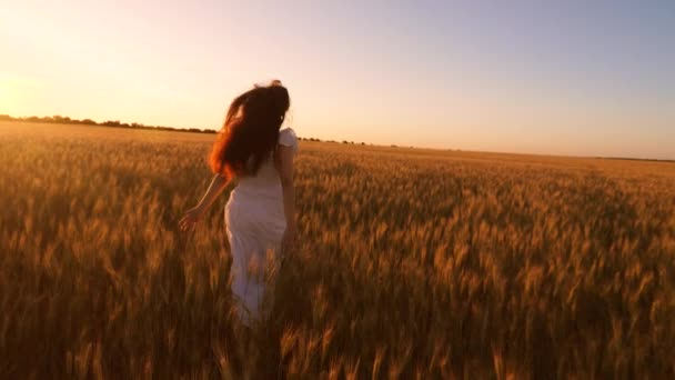 Happy girl with long developing hair running through a field with golden wheat at sunset. Slow motion