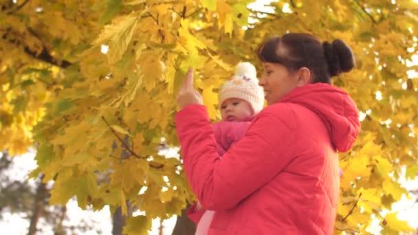 Mutter nimmt Baby in den Arm und küsst es auf die Wange, zeigt dem Kind gelbe Blätter und lacht.
