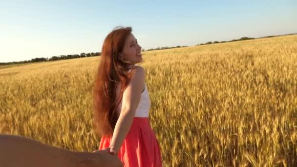 Dívka s dlouhými vlasy běží přes pole s pšenicí, miloval jednu ruku a směje se a ohlíží se na něj. Zpomalený pohyb