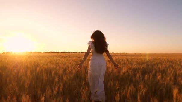 Šťastná dívka v bílých šatech s dlouhými vývoj vlasy běží přes pole s zlaté pšenice při západu slunce. Zpomalený pohyb.