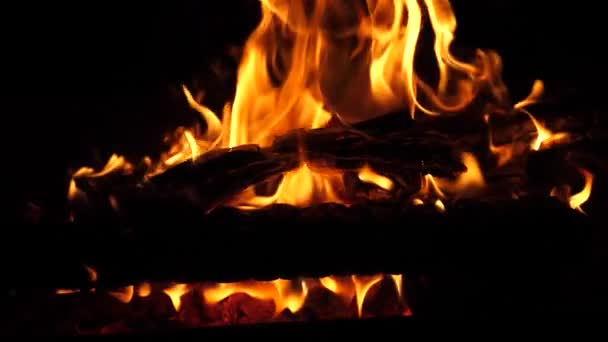 oranžový oheň hoří na protokoly v noci. Rudý oheň jiskry pomalu stoupat do nebe. Zpomalený pohyb. Closeup.