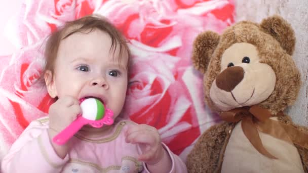 Baby plays with rattle and teddy bear.