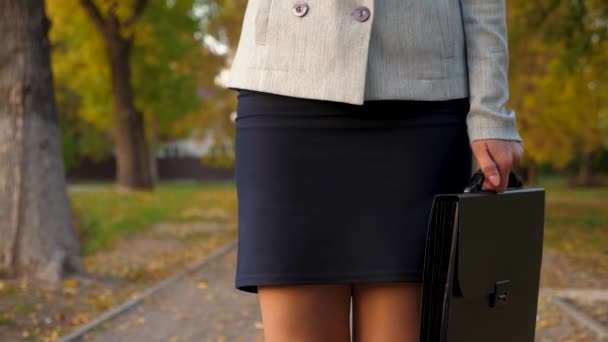 beautiful female legs walk down avenue. business woman in skirt and pantyhose is walking in an autumn park with black briefcase in her hand.