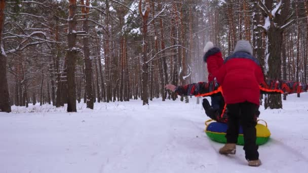 Children sled daddy on snowy road in pine park and laugh. Happy family playing in winter coniferous forest. Christmas Holidays.