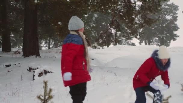 Teen dívky hrát sněhové koule v zasněžené zimě a smích s radostí. Procházky na čerstvém vzduchu dětí v borovém parku. Vánoční svátky