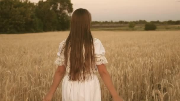 A happy girl walks across a field of yellow wheat and touches the ears of wheat with her own hands. Slow motion. girl travels in the field. The concept of eco-tourism.