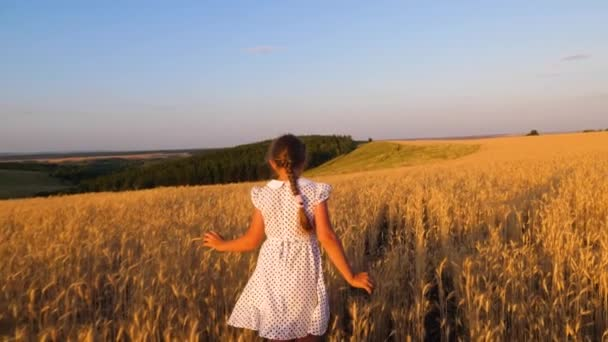 happy little girl is flying in a field of ripe wheat, on a sunset background, slow motion