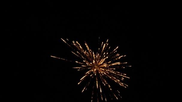zářící ohňostroj s bokeh světly na noční obloze. zářící ohňostroj. Novoroční oslava ohňostroje. Multico odkrýval ohňostroj na noční obloze. krásné barevné noční exploze v černé