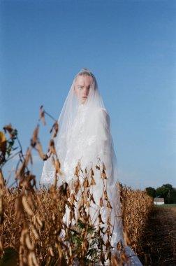 Beautiful bride in a white wedding costume. field, corn white woman boquet veil