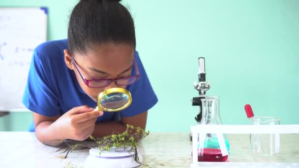 Young African American mixed kid using a magnifying glass on a green plant in chemistry and biology classroom lab experiment