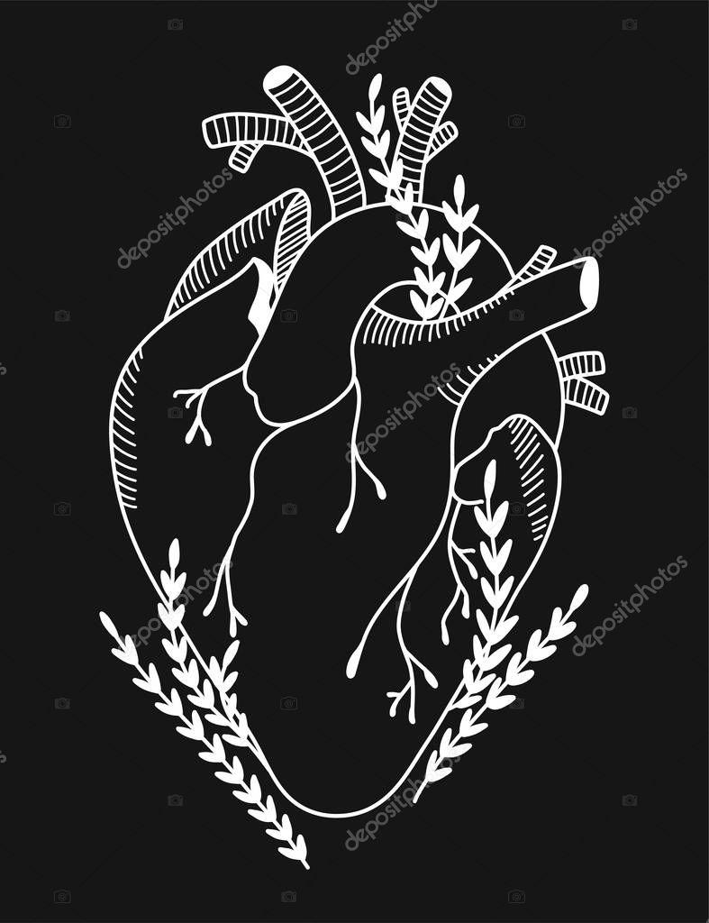 Blooming anatomical human heart