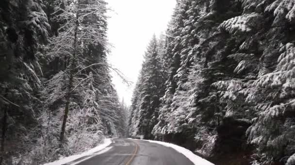 Jízda sněhem zahrnuty stromy v pomalém pohybu