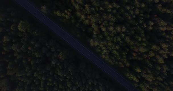 4k scenic aerial top down view vast green forest background with roadway dividing diagonal halves. Quad copter drone flying over empty local road treetops of dense woods morning rising sun nature