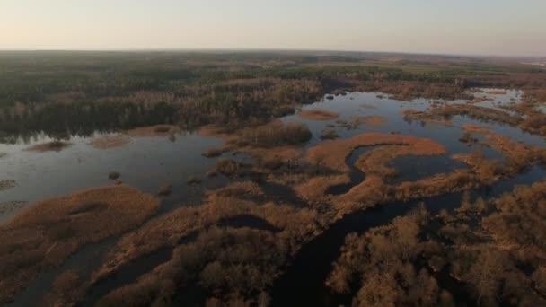 DRONY pozpátku letící nad lesní půdy pokryté vysokého stavu vody na podzimní pohyb slunce na pozadí. 4 k letecký pohled shora vodnaté lese stromy malebné panorama slunce reflexe. Péče o ochranu přírody