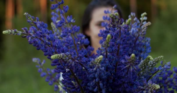 Defocused smiling woman holding bunch of lupine flowers. Girl florist demonstrates wildflowers bouquet outdoors looking happy countryside background. Slow motion video portrait lifestyle
