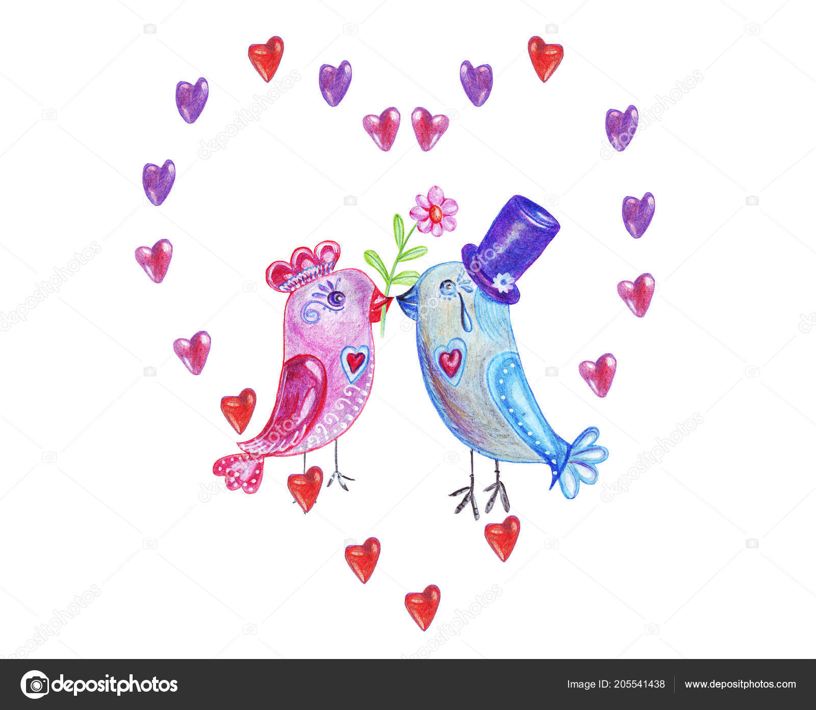 ptáci a dívky