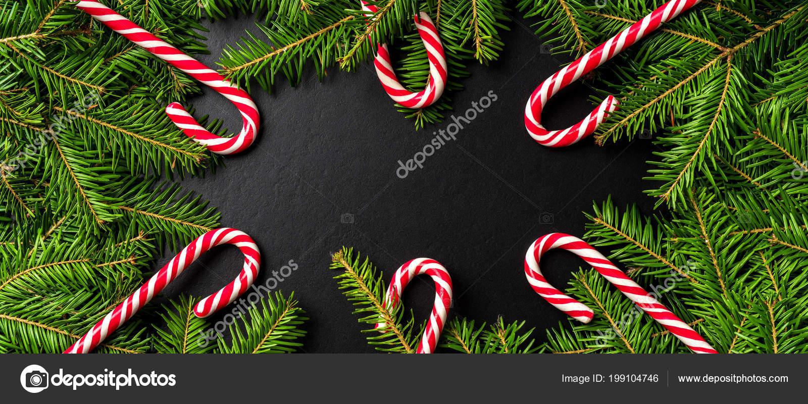 Christmas Tree Top View.Christmas Background Candy Canes Christmas Tree Top View