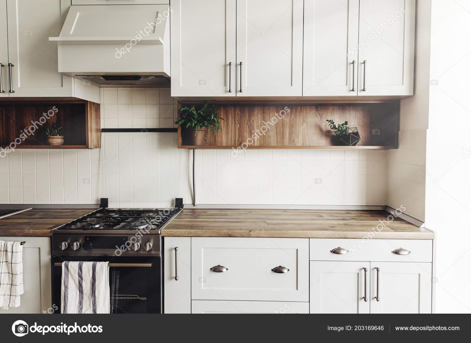 Cucina Design Moderno Stile Scandinavo Interni Cucina Grigio Luce ...