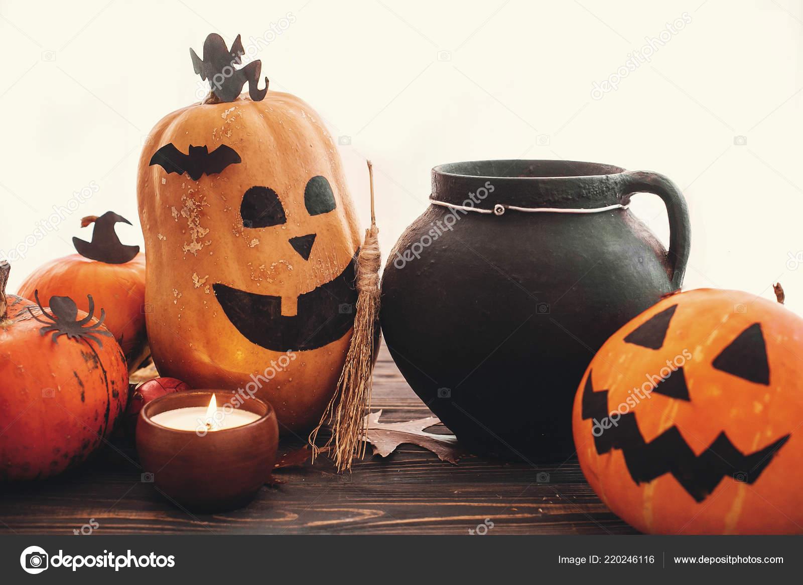 Concetto Felice Halloween Zucche Strega Calderone Pipistrelli Ragno ... a70948c53d28