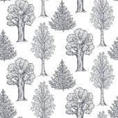 Vektorova Grafika Rucne Kreslenou Stromy Sada Cerny A Bily Obrys