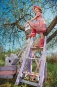Fotografie Kind, die Installation einer selbstgebauten Vogelhäuschen
