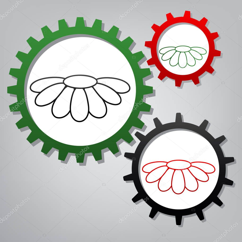 Fower Chamomile sign illustration. Vector. Three connected gears