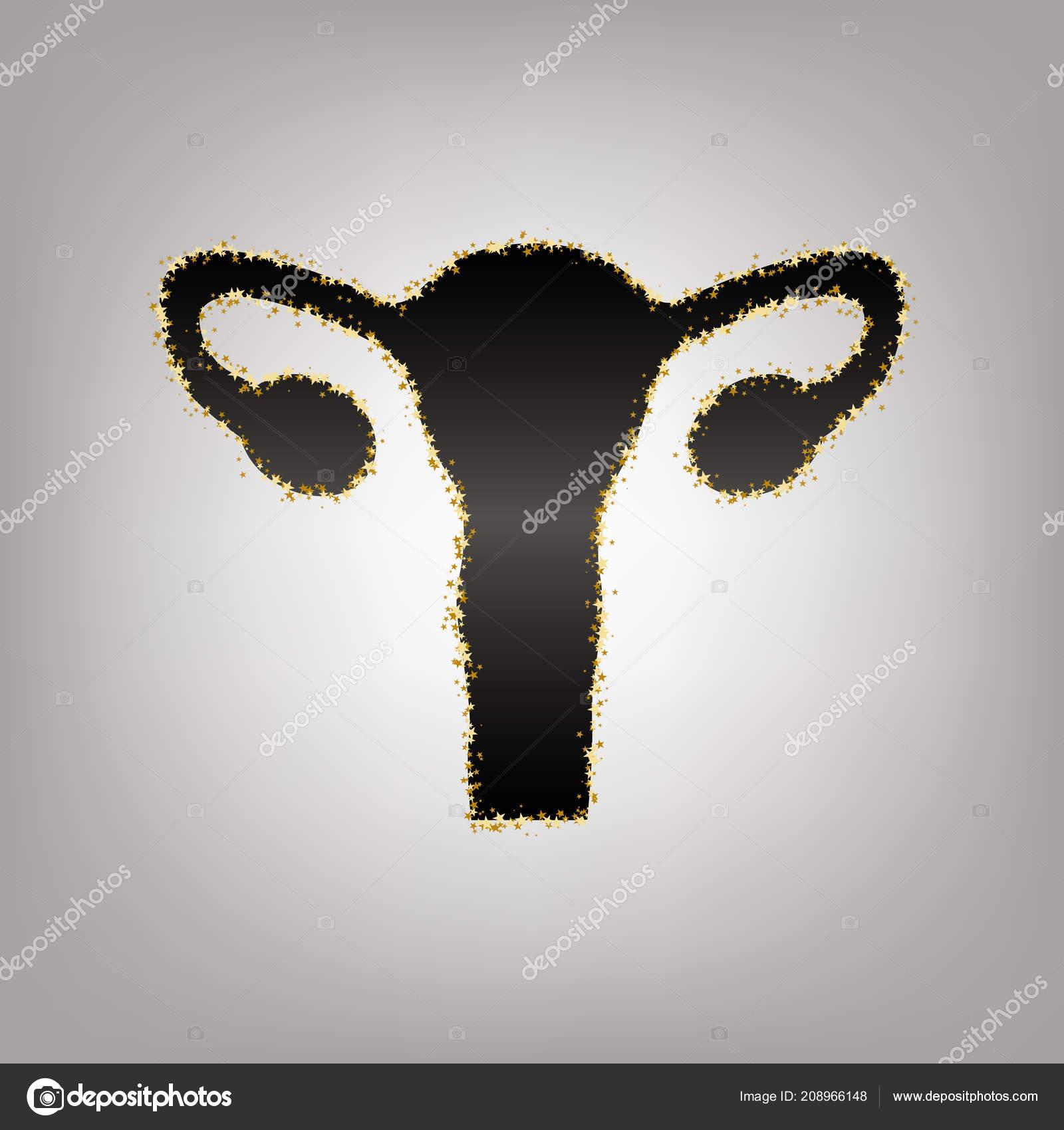 Human Anatomy Uterus Sign Vector Blackish Icon With Golden St