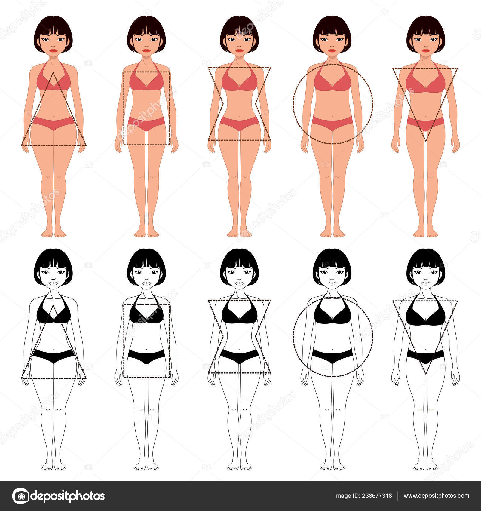 Set Five Different Types Female Body Shapes Different Typ