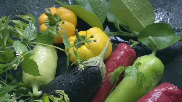 Zelenina, lilek a papriky na tmavý podklad v kapky vody v přirozeném světle