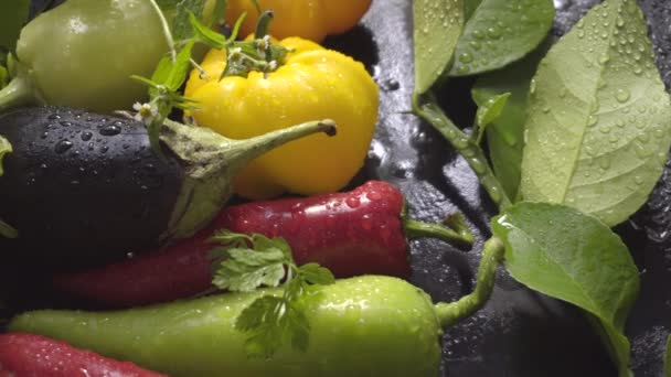 Vegetables, eggplant and pepper on a dark surface in drops of water