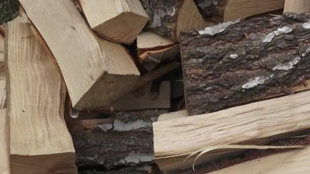 Dřevo vyrobené z břízy (cut verze). Hromada sekané palivového dřeva připravené na zimu. Březové dřevo.