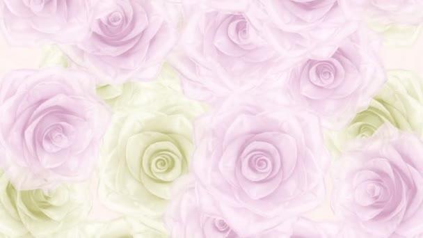 Velké růžové a bílé růže poupata upadl, smyčka bg