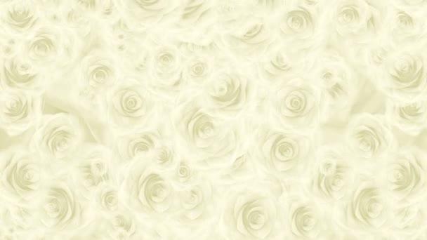 Sok fehér Rózsa rügyek leesik, hurok háttér